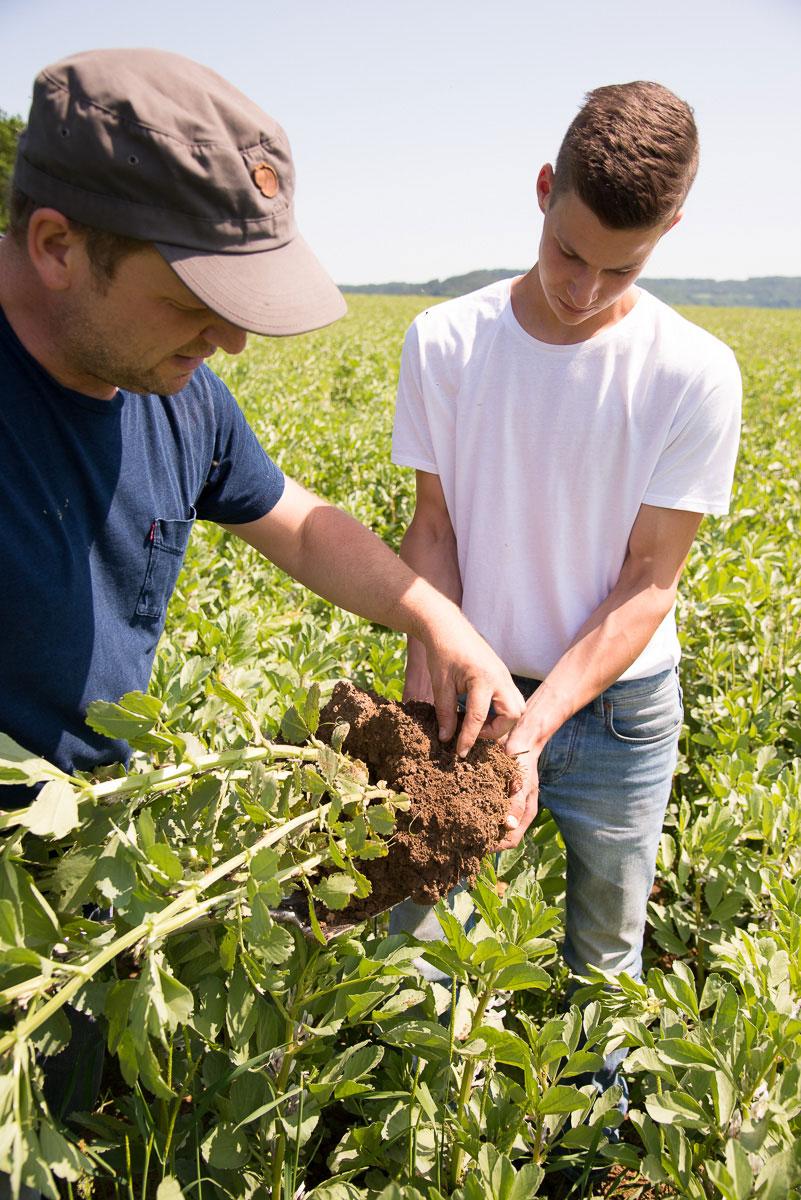 Bauer mit Mitarbeiter auf dem Feld